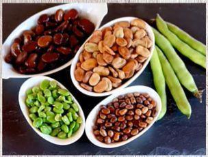 Pregnancy | Food during pregnancy